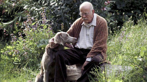 Der plötzliche Tod seiner Frau Marlies bringt das Leben von Hubert Herrlich (...