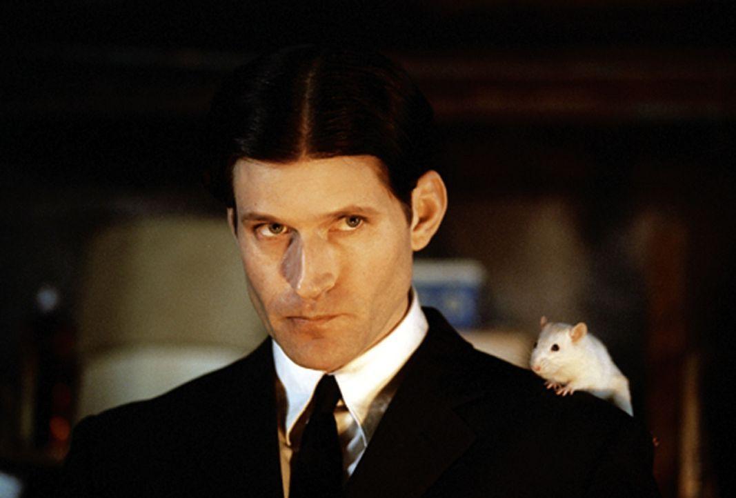 Als Anführer einer Horde Ratten startet Willard (Crispin Glover) einen bitterbösen Rachefeldzug gegen die Gesellschaft, die ihn so sehr gequält u... - Bildquelle: Warner Bros. GmbH