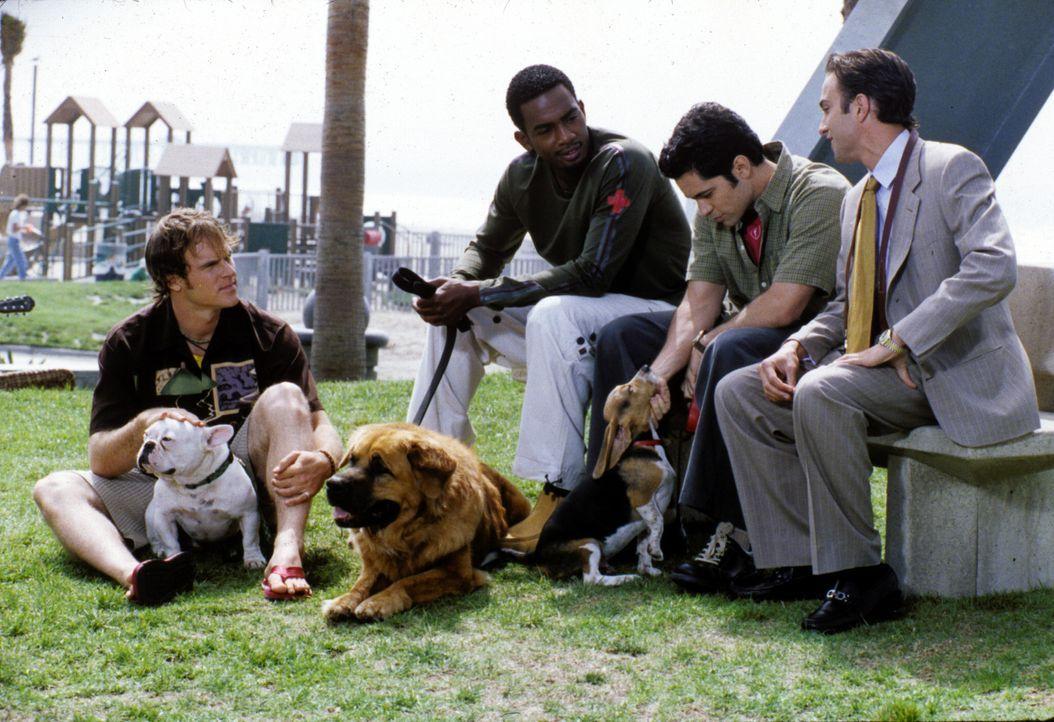 Royce (Mike Damus, r.), Clay (Daniel Pino, 2.v.r.), Jeremiah (Bill Bellamy, 2.v.l.) und Eric (Niklaus Lange, l.) treffen sich im Park beim Gassigehe... - Bildquelle: Paramount Television