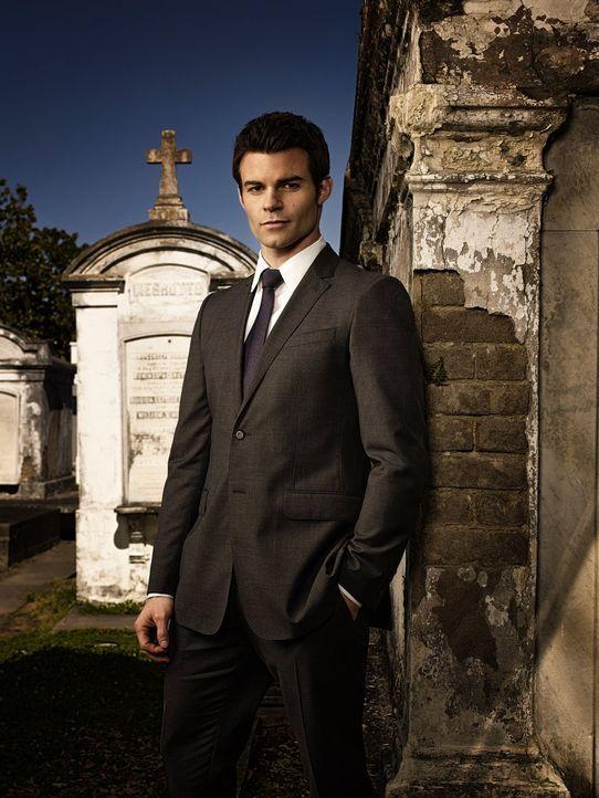 (1. Staffel) - Elijah (Daniel Gillies) beschützt die Familie und jedes einzelne Familienmitglied mit allen Mitteln ... - Bildquelle: Warner Bros. Television