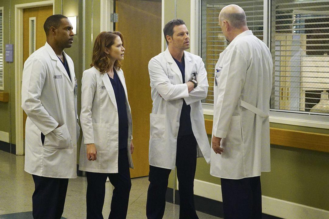 Während Callie und Arizona vor Gericht um das Sorgerecht für Sofia kämpfen, müssen sich Alex (Justin Chambers, 2.v.r.), April (Sarah Drew, 2.v.l.),... - Bildquelle: Richard Cartwright ABC Studios