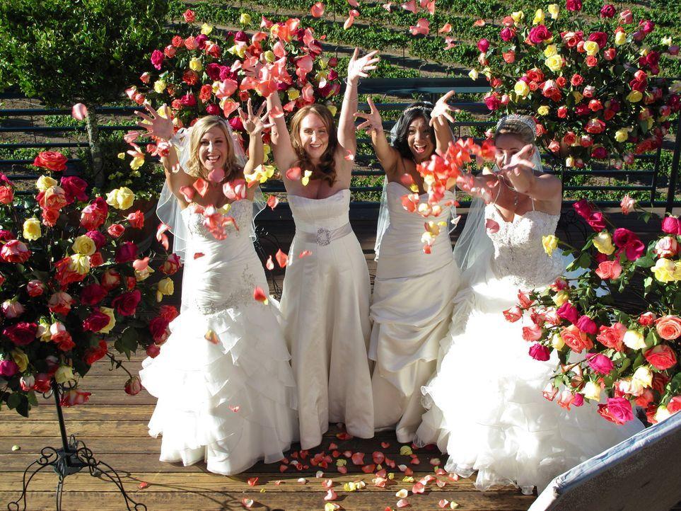 Kämpfen um den Titel und eine atemberaubende Hochzeitsreise: Tanaya (l.), Becky (2.v.l.), Evelyn (2.v.r.), Carrie (r.) ... - Bildquelle: Richard Vagg DCL