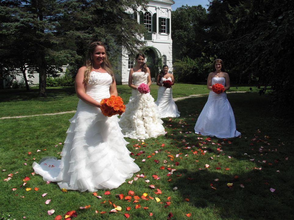 Wer wird die perfekte Hochzeit feiern: Deanna (l.), Aimee (2.v.l.), Lydia (2.v.r.) oder Jennifer (r.)? - Bildquelle: Richard Vagg DCL
