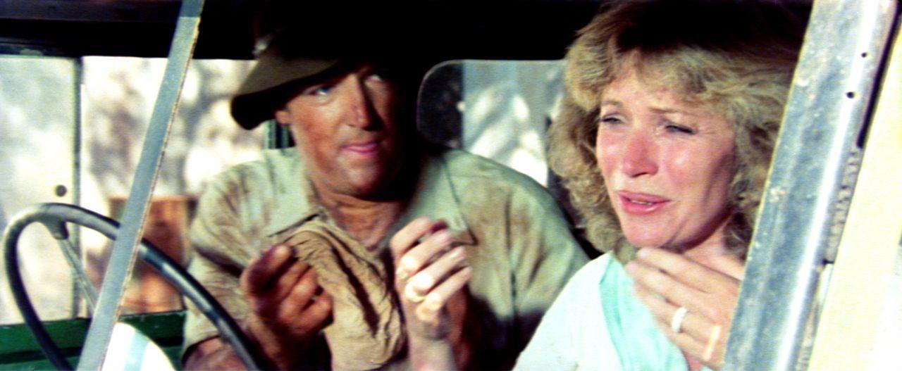 Der tollpatschige Wissenschaftler Andrew (Marius Weyers, l.) raubt Kate (Sandra Prinsloo, r.) den letzten Nerv - aber nur am Anfang ... - Bildquelle: 20th Century Fox Film Corporation