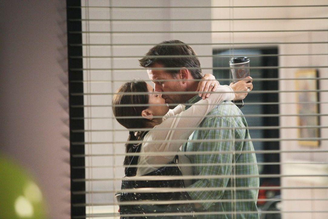 Als Bree sieht, wie sich Susan (Teri Hatcher, l.) und Mike (James Denton, r.) küssen, fasst sie einen Beschluss ... - Bildquelle: ABC Studios