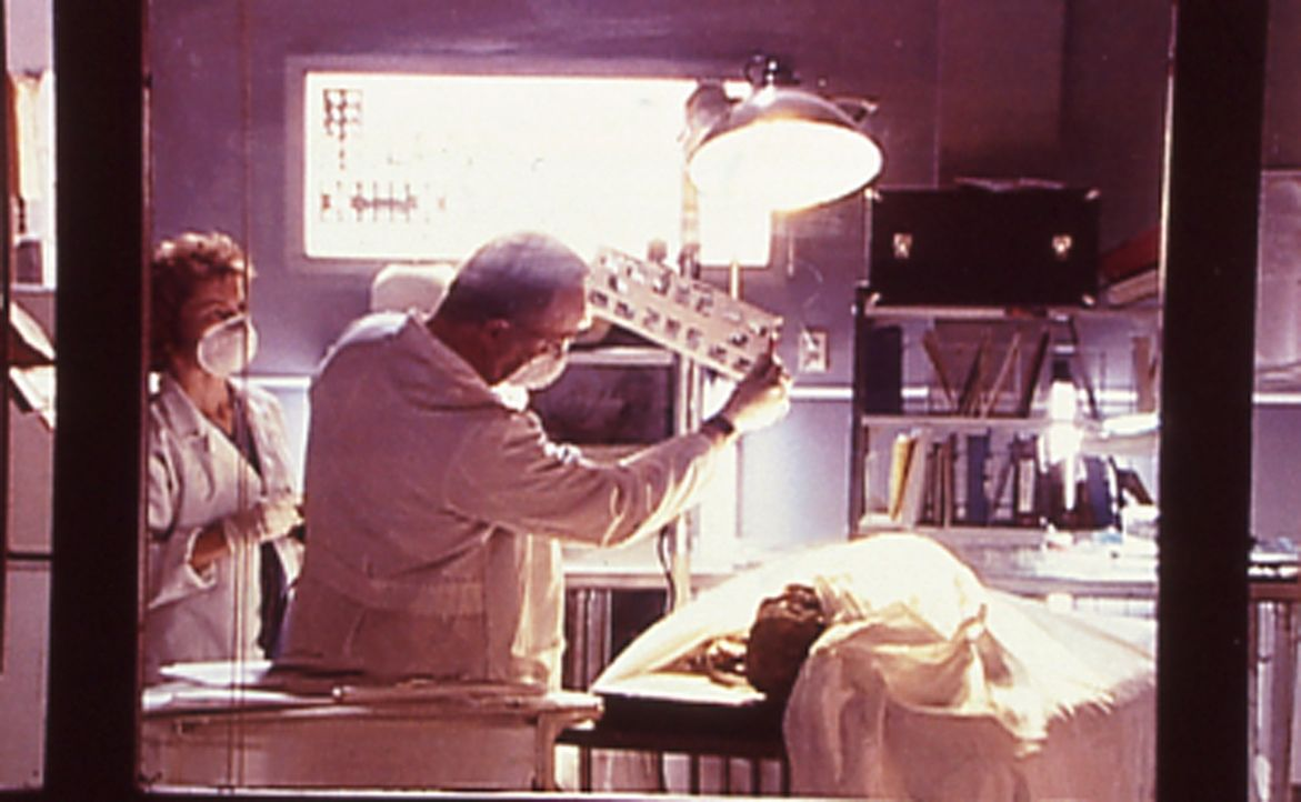 """1980: Die FBI-Agenten versuchen mit einer massiven Undercover-Aktion unter dem Codenamen """"Safebet""""  herauszufinden, wohin die Mafia ihre Tentakel üb... - Bildquelle: Randy Jacobson New Dominion Pictures, LLC"""
