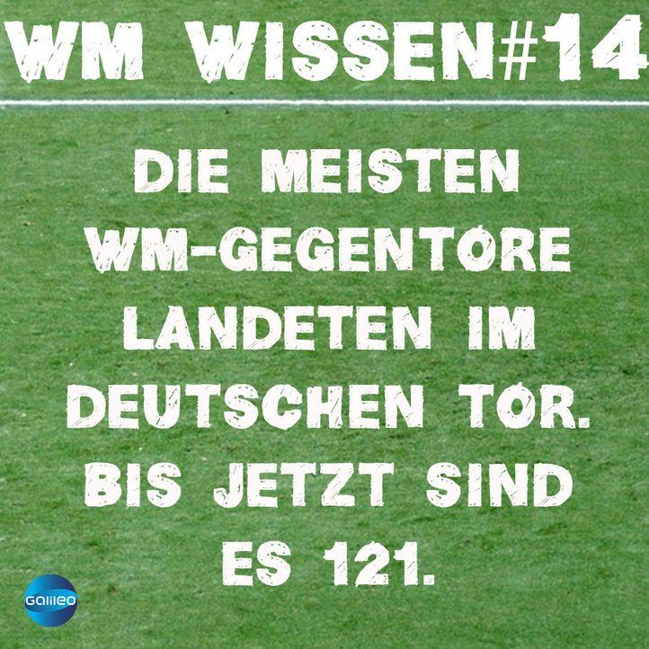 wmwissen14
