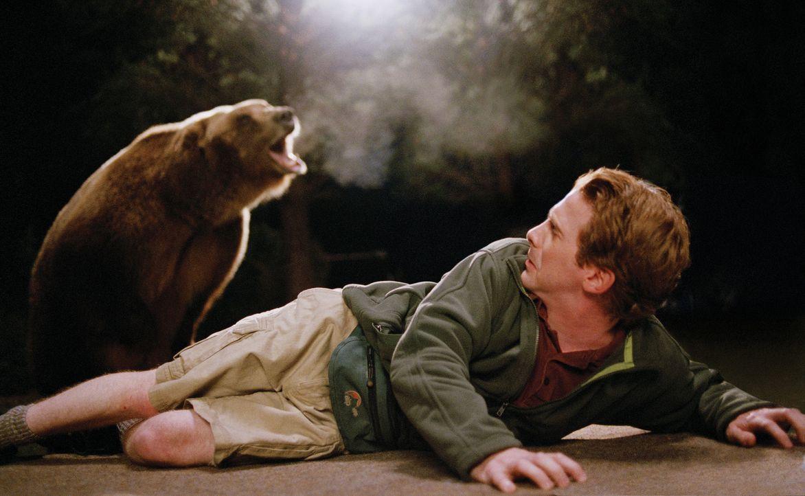 Unglücklicherweise verliert Dan (Seth Green) bei der Begegnung mit einer Bärin nicht nur sein Handy, sondern auch den Großteil der Ausrüstung und di... - Bildquelle: Paramount Pictures