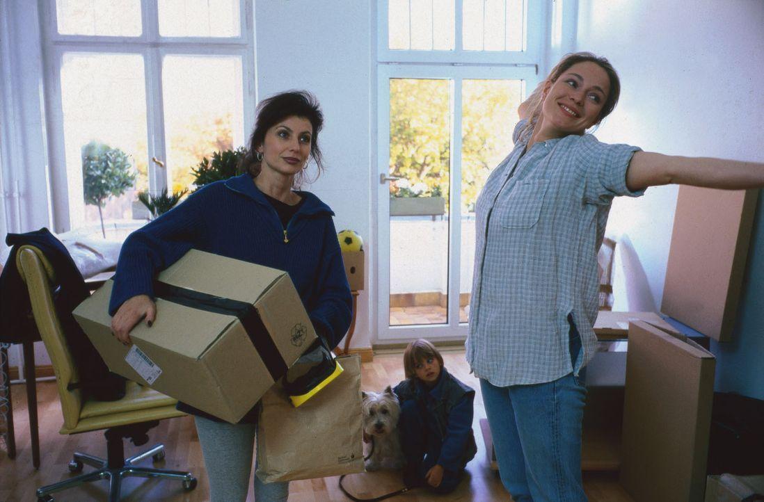 Nach der Trennung von ihrem Mann will Sarah (Katja Weitzenböck, r.) zusammen mit ihrem Sohn Beni (Dominik Janisch, M.) von vorn anfangen. Stolz zeig... - Bildquelle: Sat.1