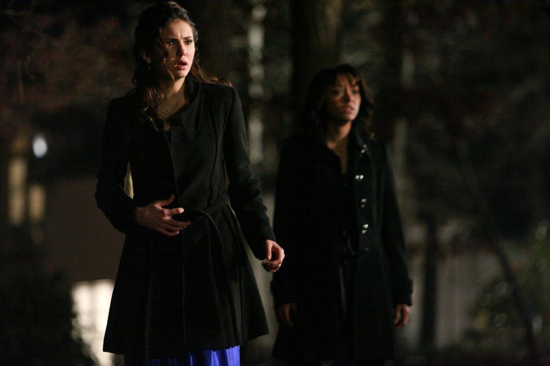 Dass Stefan eine Gefahr darstellt, haben die beiden Mädchen (v.l.: Nina Dobrev, Katerina Graham) nicht geahnt ... - Bildquelle: Warner Bros. Television