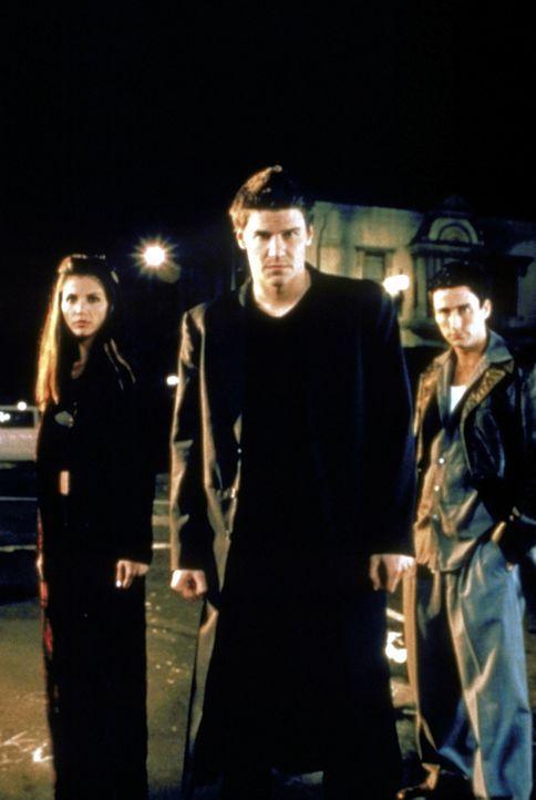 Angel (David Boreanaz, M.), Doyle (Glenn Quinn, r.) und Cordelia (Charisma Carpenter, l.) haben dem Bösen den Kampf angesagt. - Bildquelle: TM +   2000 Twentieth Century Fox Film Corporation. All Rights Reserved.