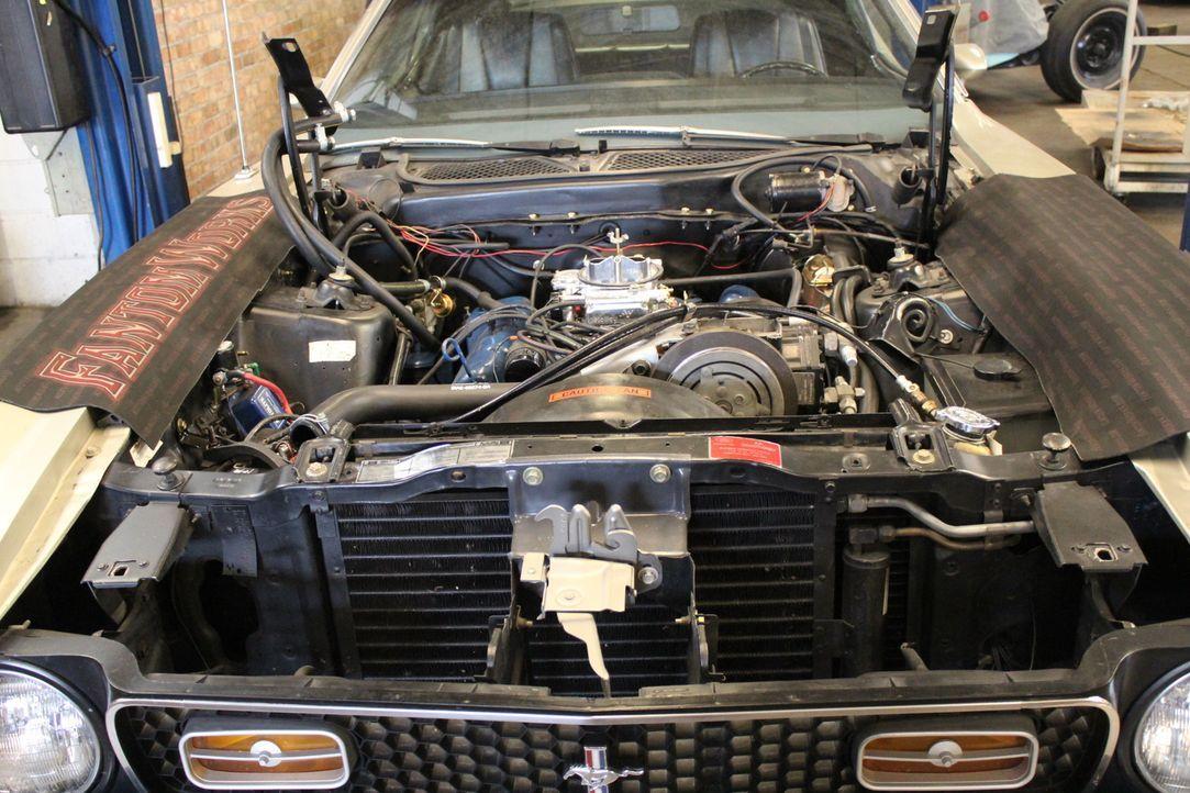 """Das verflixte Getriebe: Bekommen die Werkstattprofis den 1971er Mustang """"Mach 1"""" von Autoliebhaber George wieder hin? - Bildquelle: New Dominion Pictures LLC."""