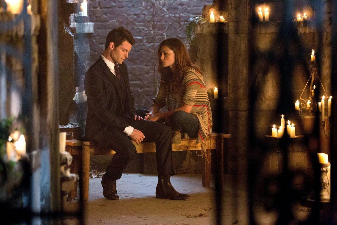 Als Elijah (Daniel Gillies, l.) das Geheimnis der Werwölfin Hayley (Phoebe Tonkin, r.) aufdeckt, schmiedet er einen Plan ... - Bildquelle: Warner Bros. Television