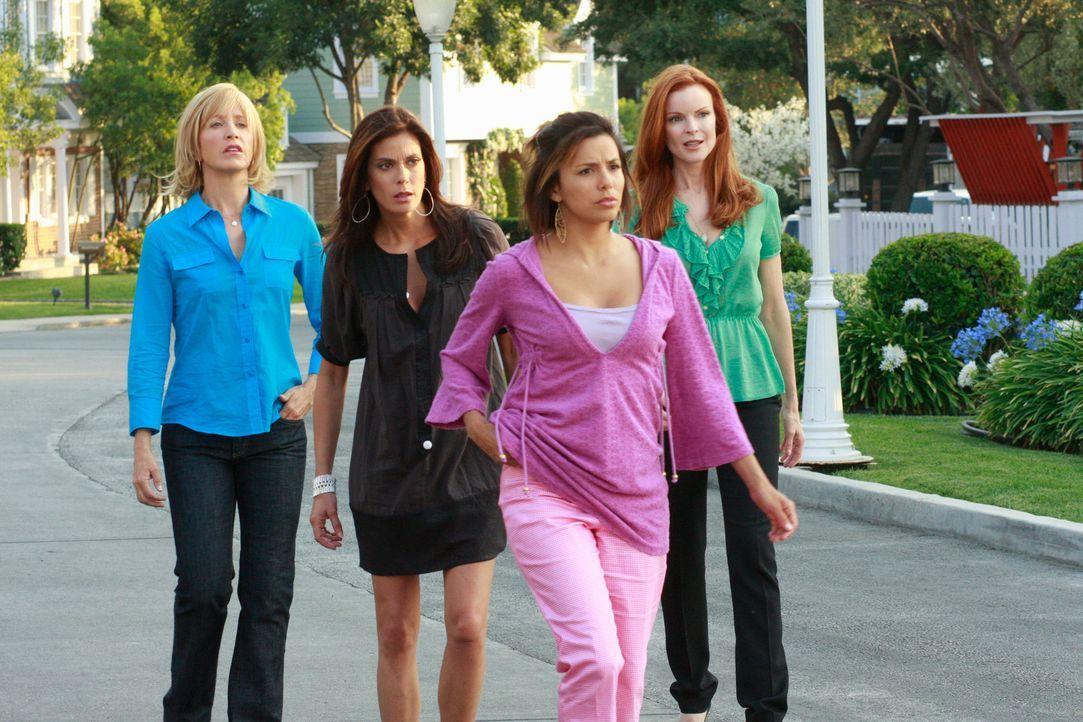 Fünf Jahre sind vergangen und Lynette (Felicity Huffman, l.), Susan (Teri Hatcher, 2.v.l.), Gabrielle (Eva Longoria, 2.v.r.) und Bree (Marcia Cross,... - Bildquelle: ABC Studios