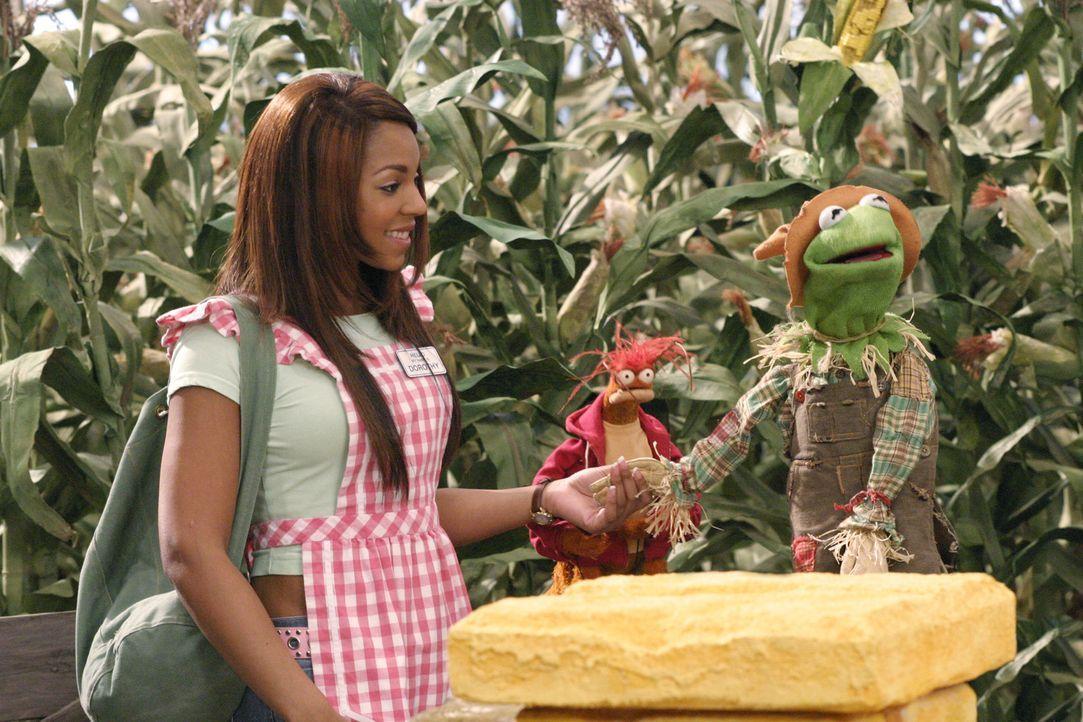 Machen sich daran, den Zauberer von Oz aufzutreiben: Dorothy (Ashanti) und ihre Freunde ... - Bildquelle: The Muppets Holding Company, LLC. MUPPETS characters and elements are trademarks of the Muppet Holding Company, LLC.  All rights reserved