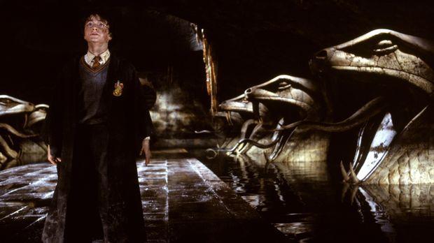 Auf dem gefährlichen Weg zur geheimnisvollen Kammer des Schreckens: Harry Pot...