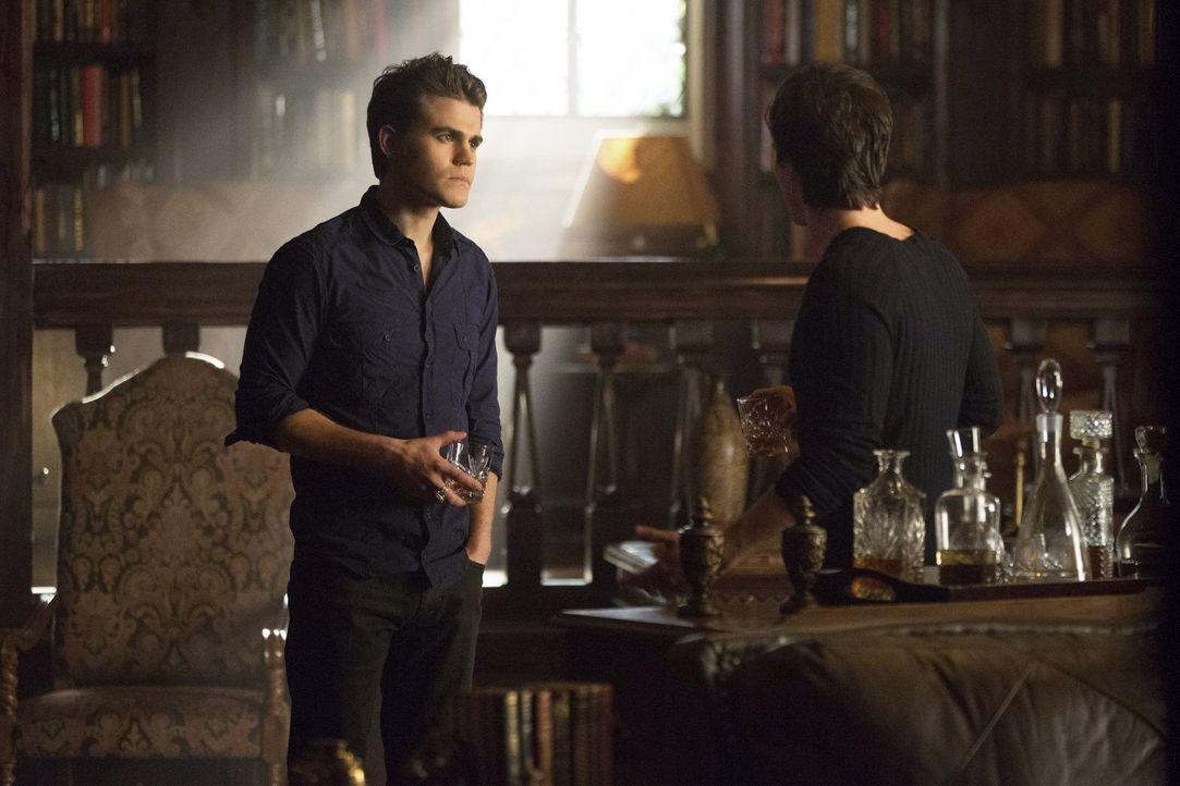 Hat es Stefan (Paul Wesley) mit seinem Bruder (Ian Somerhalder, r.) zu weit getrieben? Die beiden Vampire haben Elena eingesperrt - angeblich nur bi... - Bildquelle: Warner Brothers
