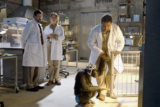 Eleventh Hour - In einem Labor in Nevada experimentiert Dr. Bruce Nesic (Judd...