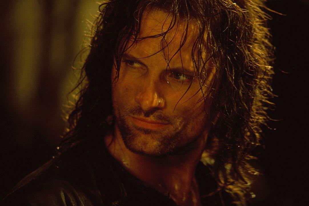 Aragorn (Viggo Mortensen) und die anderen Gefährten beschließen, die Suche nach den verschleppten Hobbits aufzunehmen ... - Bildquelle: Warner Brothers