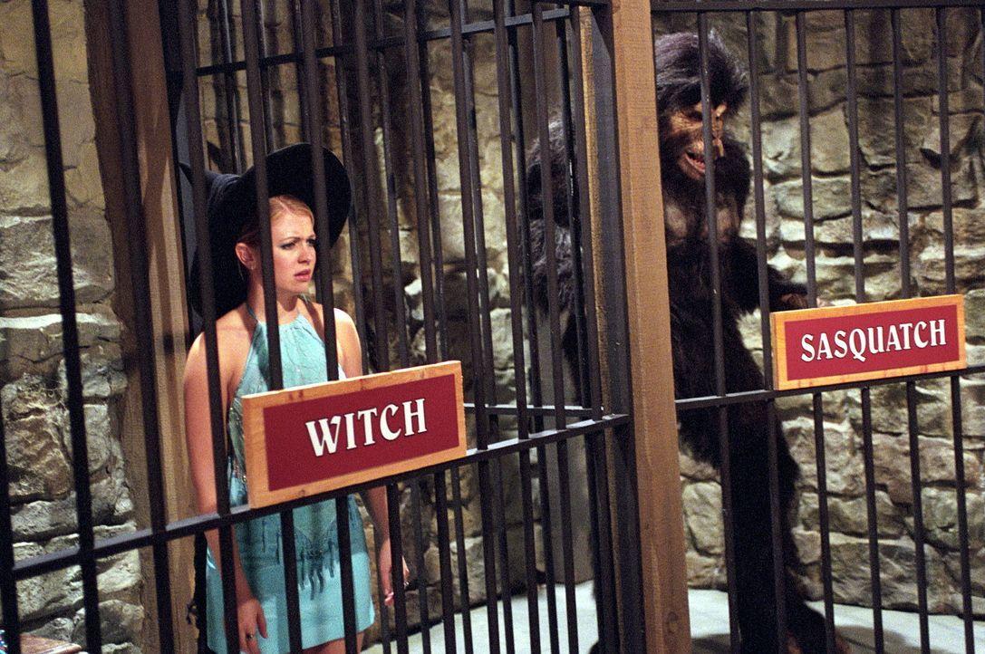 Als Sabrina (Melissa Joan Hart, l.) auf den gutaussehenden Victor hereinfällt, ahnt sie nicht, dass diesem nur noch eine Hexe in seinem Sammelsuriu... - Bildquelle: Paramount Pictures