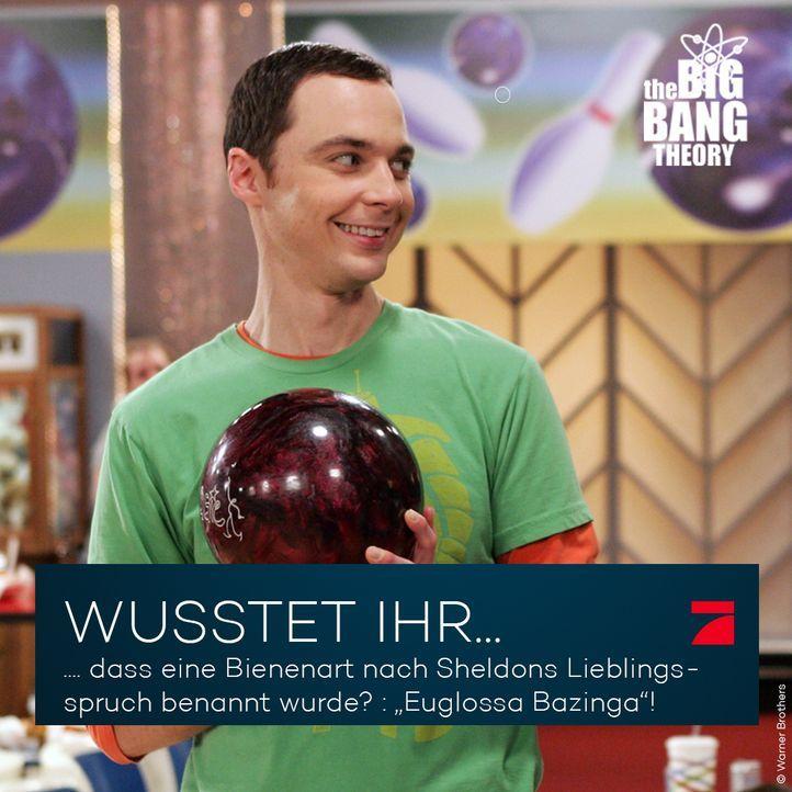 Big Bang Theory Trivia: Bazinga! - Bildquelle: Warner Brothers