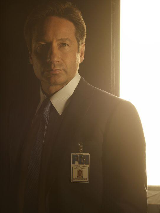 (1. Staffel) - Wird es Mulder (David Duchovny) endlich gelingen, das große Ganze zu erkennen? - Bildquelle: 2016 Fox and its related entities.  All rights reserved.