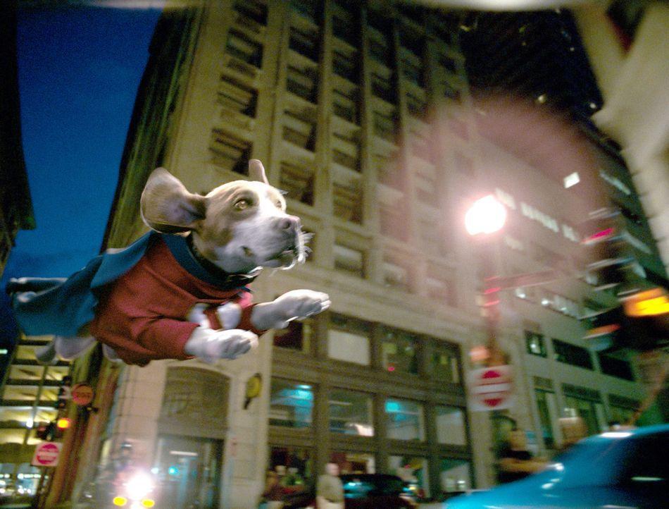 Wird Underdog den bösen Dr. Simon Barsinister aufhalten können? - Bildquelle: Walt Disney Pictures.  All rights reserved