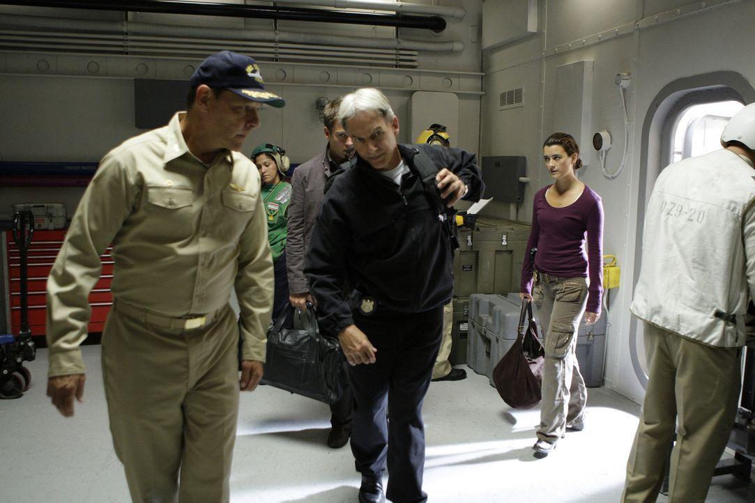 Haben wieder einen Fall geklärt: Tony (Michael Weatherly, 3.v.l.), Gibbs (Mark Harmon, 3.v.r.) und Ziva (Cote de Pablo, 2.v.r.) ... - Bildquelle: CBS Television