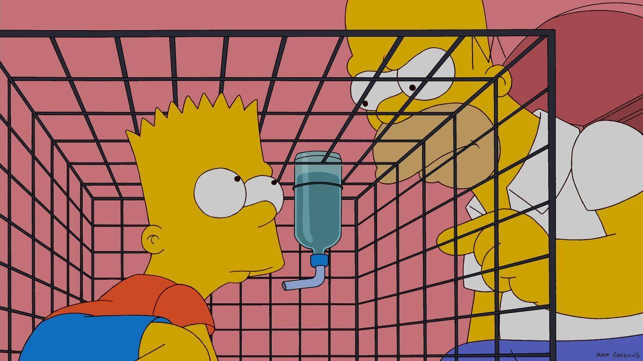 Homer (r.) ist sauer auf Bart (l.) und sperrt ihn deshalb in einen Hasenkäfig ein. Doch Bart lässt sich das nicht gefallen und plant einen Rachefe... - Bildquelle: und TM Twentieth Century Fox Film Corporation - Alle Rechte vorbehalten