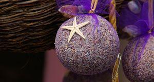 Gartengestaltung_2016_03_31_Lavendel pflanzen_Bild 1_fotolia_LianeM