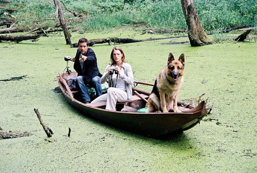 Marc (Alexander Pschill, l.), Niki (Elke Winkens, r.) und Rex versuchen, das Krokodil aufzuspüren ... - Bildquelle: Sat.1