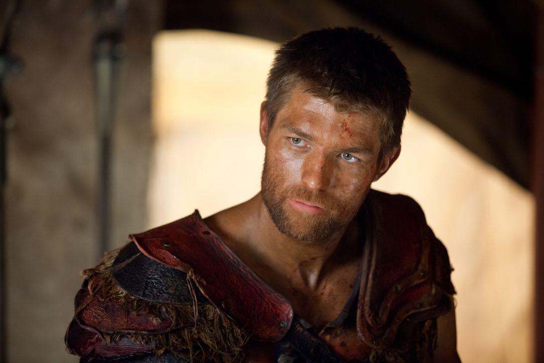Obwohl das Töten ihm keinen Seelenfrieden beschert, will Spartacus (Liam McIntyre) so viele Römer wie eben möglich in den Hades schicken. Deshalb ei... - Bildquelle: 2013 Starz Entertainment, LLC.  All Rights Reserved