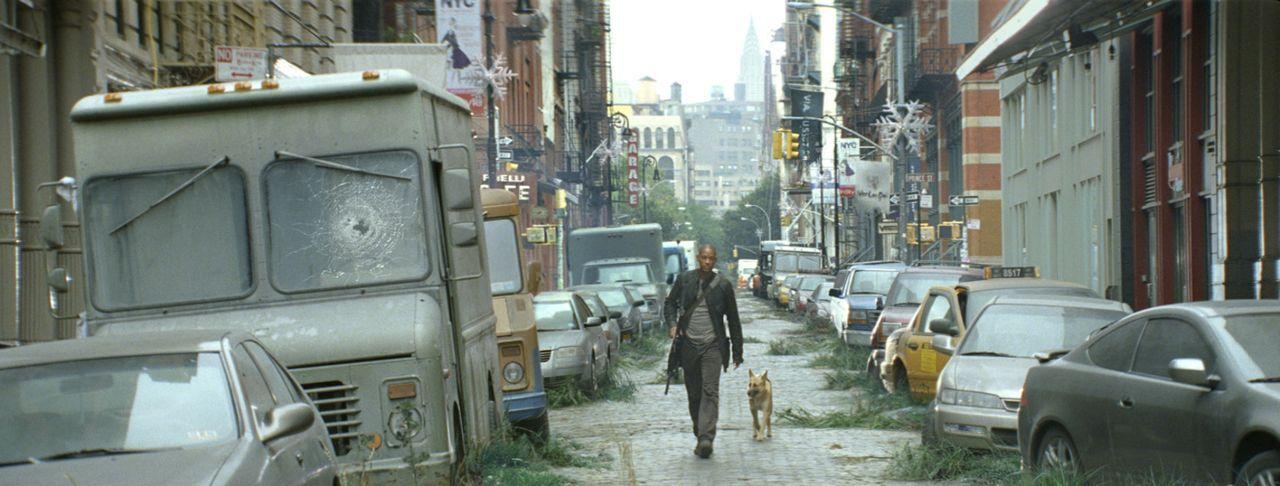 Gemeinsam mit seinem treuen Gefährten versucht Robert Neville (Will Smith) die Menschheit zu retten ... - Bildquelle: Warner Brothers International