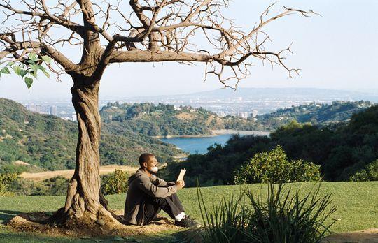 Noch Tausend Worte - Seine letzte Überlebenschance: Sollte der magische Baum...