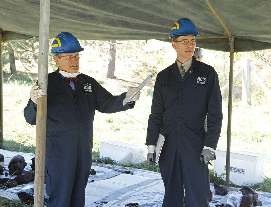 Soldaten bringen die Särge gefallener Kameraden im  Flugzeug zurück in die USA und stürzen unterwegs ab. Nur einer überlebt. Ducky (David McCallum,... - Bildquelle: CBS Television