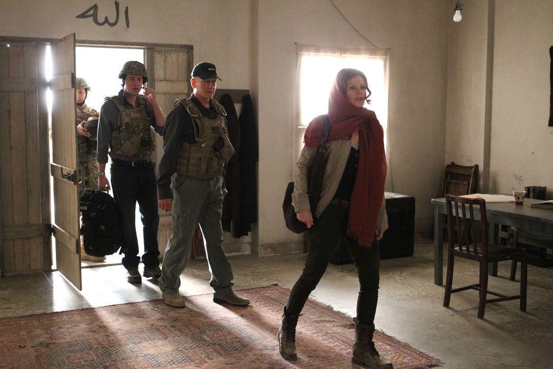 Eine Mordermittlung führt Gibbs (Mark Harmon, 2.v.r.) und McGee (Sean Murray, 2.v.l.) nach Afghanistan, wo sie auf Catherine Tavier (Lolita Davidovi... - Bildquelle: CBS Television