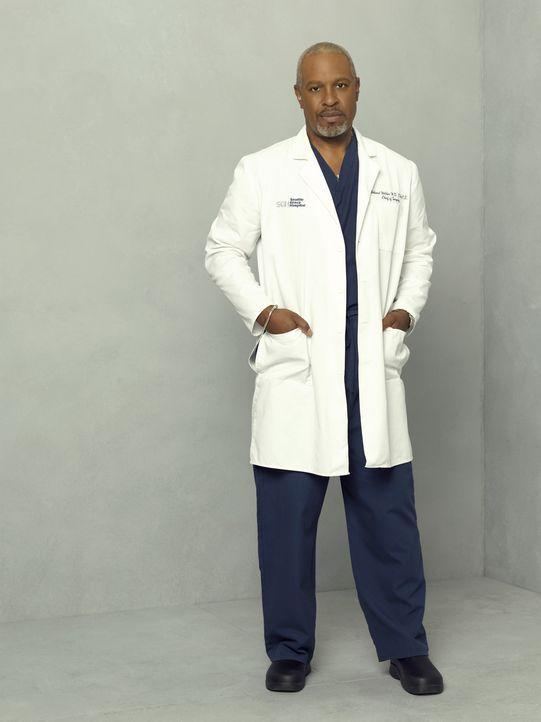 (4. Staffel) - Ist und bleibt der Chef der Chirurgie: Dr. Richard Webber (James Pickens, Jr.) ... - Bildquelle: Touchstone Television