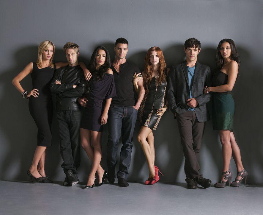 Haben alle düsteres Geheimnis: Lauren Yung (Stephanie Jacobsen, 3.v.l.), Auggie Kirkpatrick (Colin Egglesfield, M.), Ella Simms (Katie Cassidy, l.)... - Bildquelle: 2009 The CW Network, LLC. All rights reserved.
