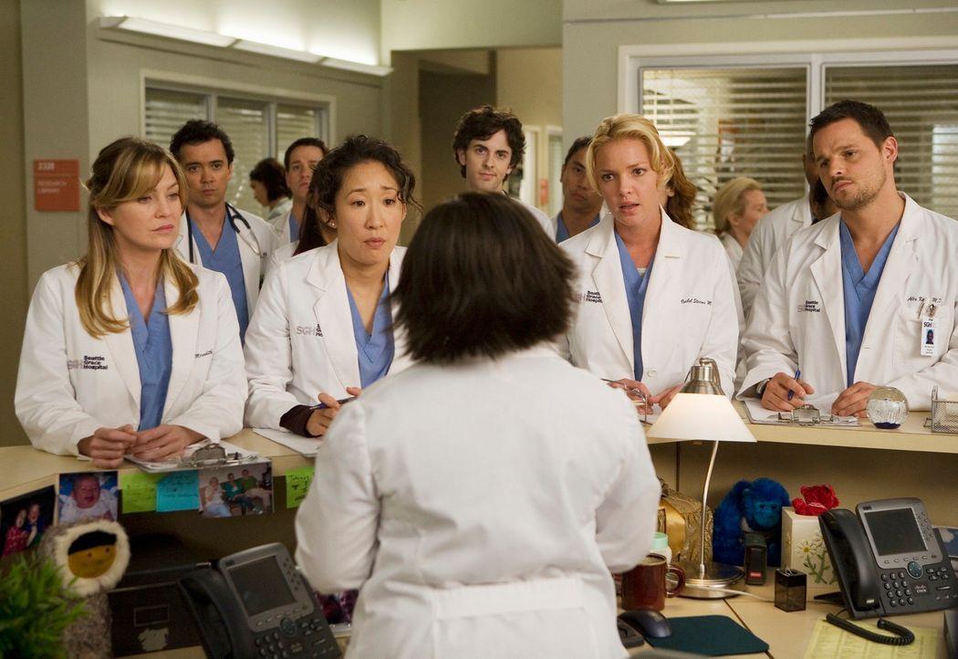 Da alle Assistenzärzte, und somit auch Meredith (Ellen Pompeo, vorne l.), Cristina (Sandra Oh, vorne 2.v.l.), Izzie (Katherine Heigl, vorne 2.v.r.)... - Bildquelle: Touchstone Television
