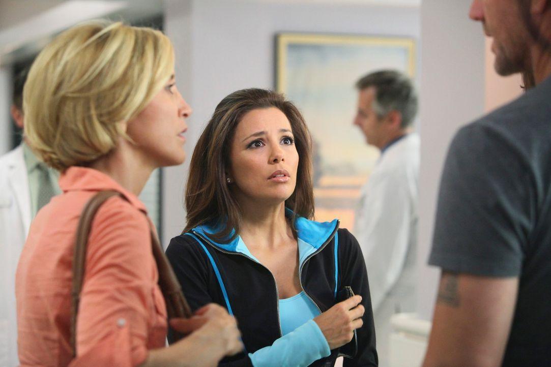 Während Karl und Bree ein Schäferstündchen halten, machen sich Lynette (Felicity Huffman, l.) und Gabrielle (Eva Longoria, r.) Sorgen um Julie, die... - Bildquelle: ABC Studios
