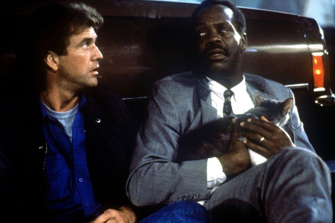 Die letzte Woche bis zu seiner Pensionierung verläuft dank seines Partners Martin Riggs (Mel Gibson, l.) für den geplagten Roger Murtaugh (Danny Glo... - Bildquelle: Warner Bros.