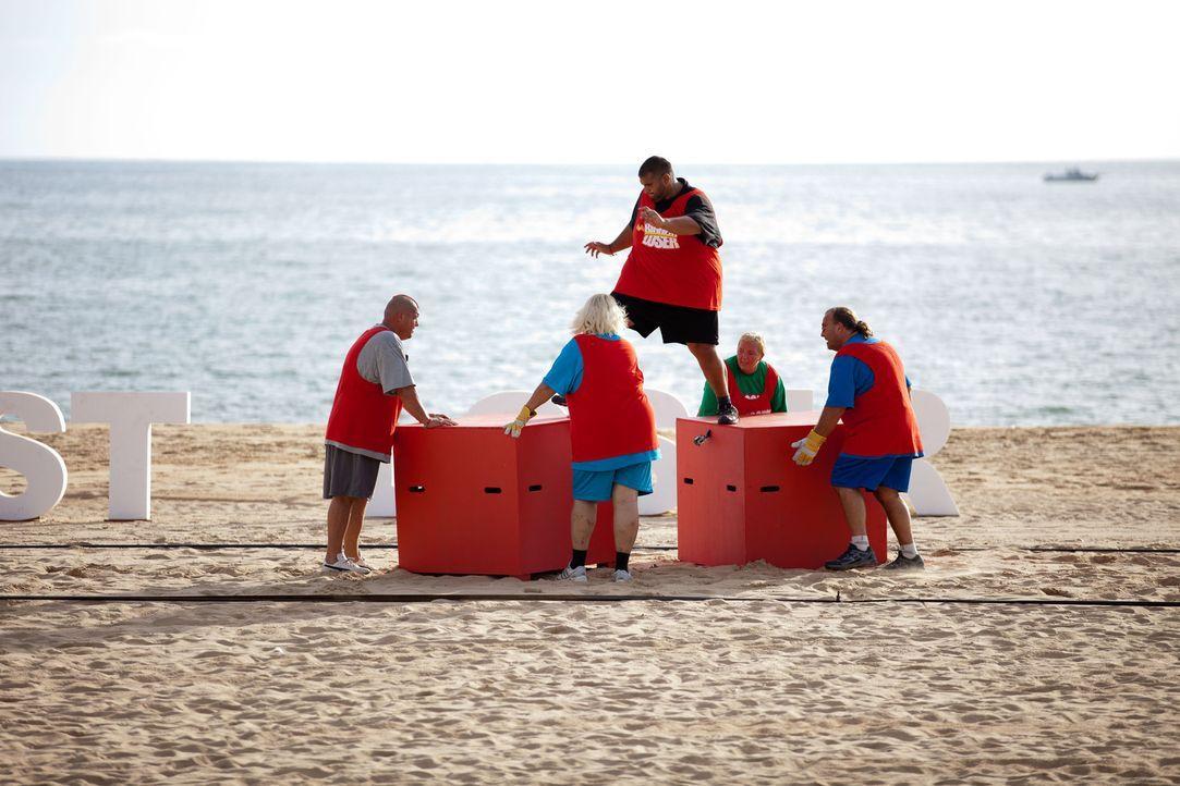 Für Team muss Ali (oben) die wichtige Rolle als Kapitän übernehmen. Kann das gutgehen? - Bildquelle: Enrique Cano SAT.1