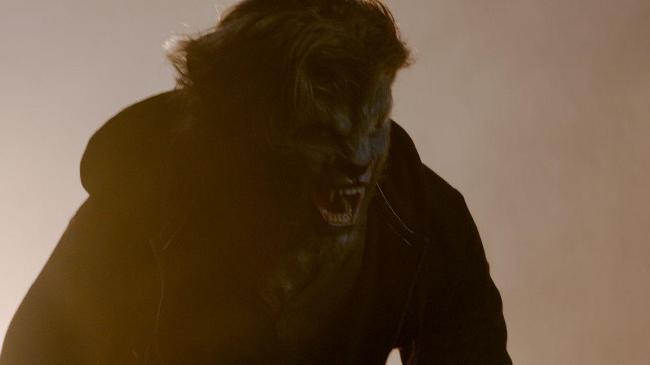 Mit 18 Jahren kommt er durch zwei brutale Morde seiner wahren Identität auf die Spur: Cayden (Lucas Till) ist ein Werwolf. Doch wer sind seine Elter... - Bildquelle: SQUAREONE ENTERTAINMENT GMBH