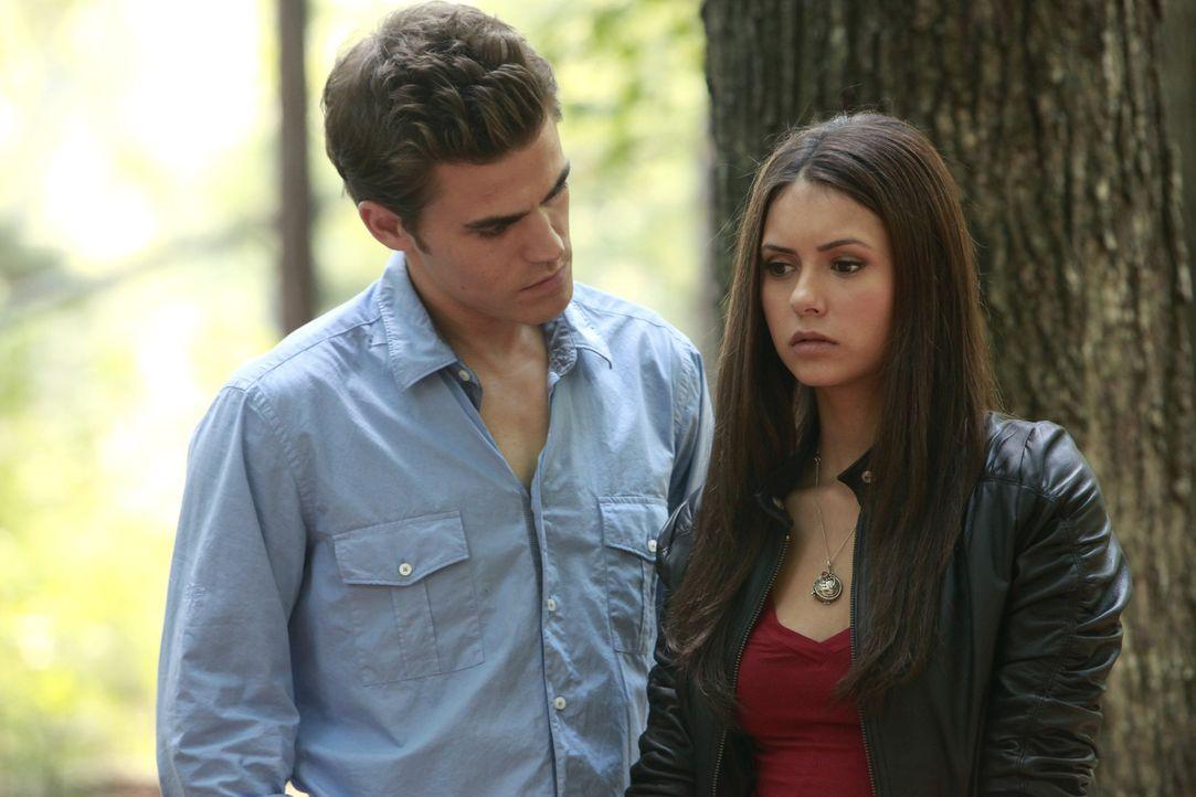 Stefan (Paul Wesley, l.) offenbart Elena (Nina Dobrev, r.) sein Geheimnis, dass er ein Vampir ist und bittet sie, sein Geheimnis zu wahren. - Bildquelle: Warner Brothers