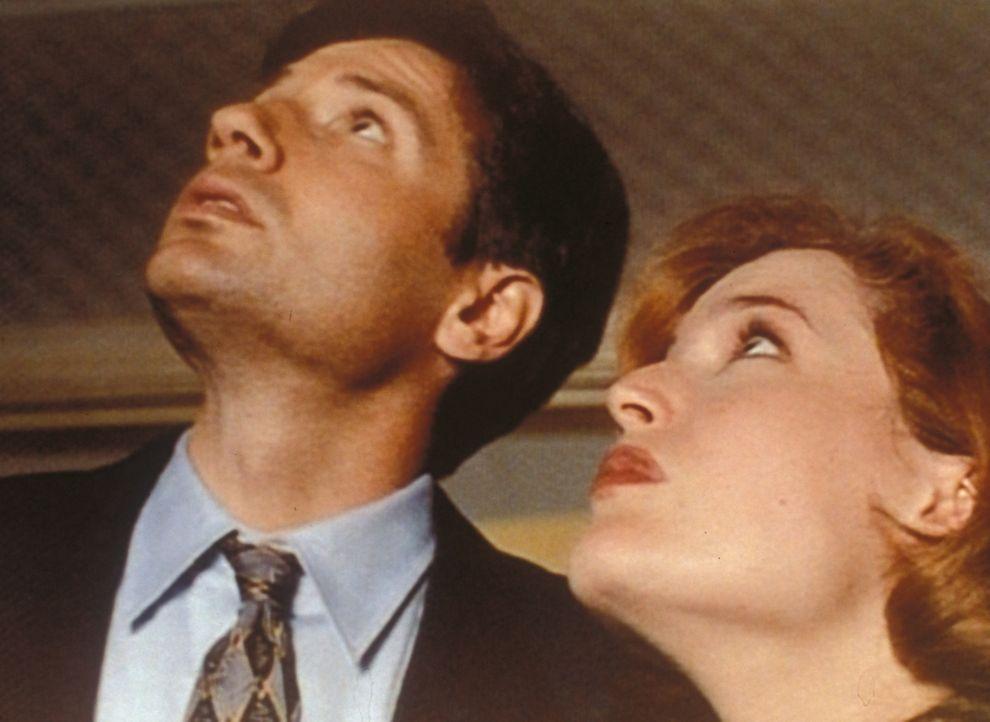 Mulder (David Duchovny, l.) und Scully (Gillian Anderson, r.) entdecken im Haus eines staatlichen seine Leiche auf dem Dachboden. Ein zum Tode verur... - Bildquelle: TM +   Twentieth Century Fox Film Corporation. All Rights Reserved.