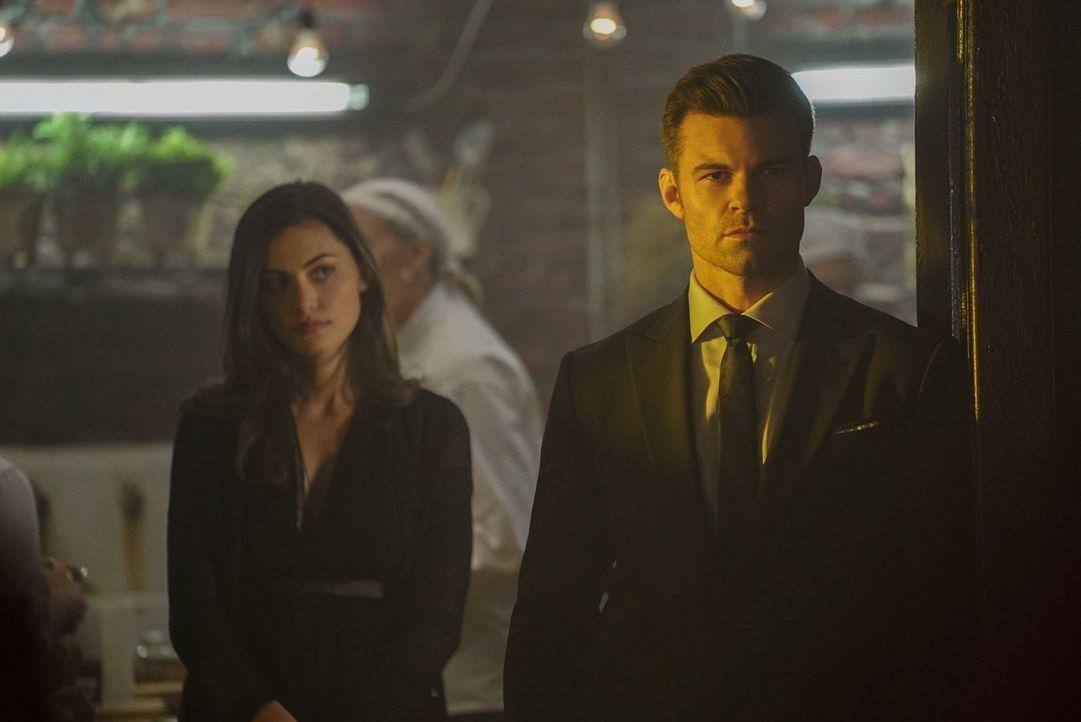 Die Familie steht für Elijah (Daniel Gillies, r.) über allem, doch der Tod von Davina hat weitaus größere Folgen, als er oder auch Hayley (Phoebe To... - Bildquelle: Warner Bros. Entertainment, Inc.