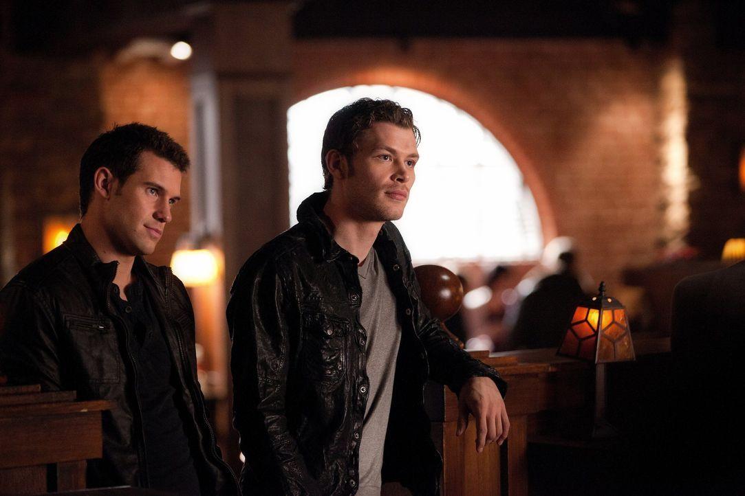 Wird Klaus (Joseph Morgan, r.) Elenas Angebot annehmen und Jeremy (Steven R. McQueen, l.) am Leben lassen ... - Bildquelle: Warner Brothers