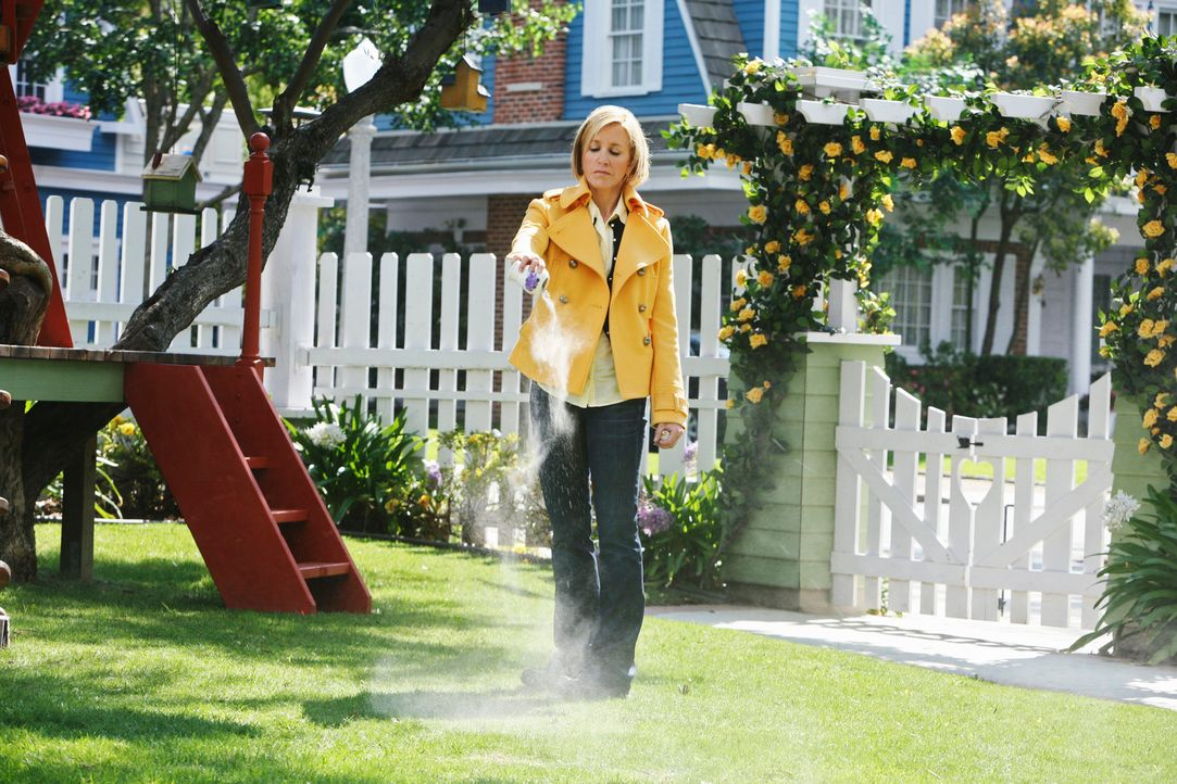 Die Freundinnen sind sich einig, die letzte Ruhestätte von Edie, soll die Wisteria Lane sein: Lynette (Felicity Huffman) ... - Bildquelle: ABC Studios