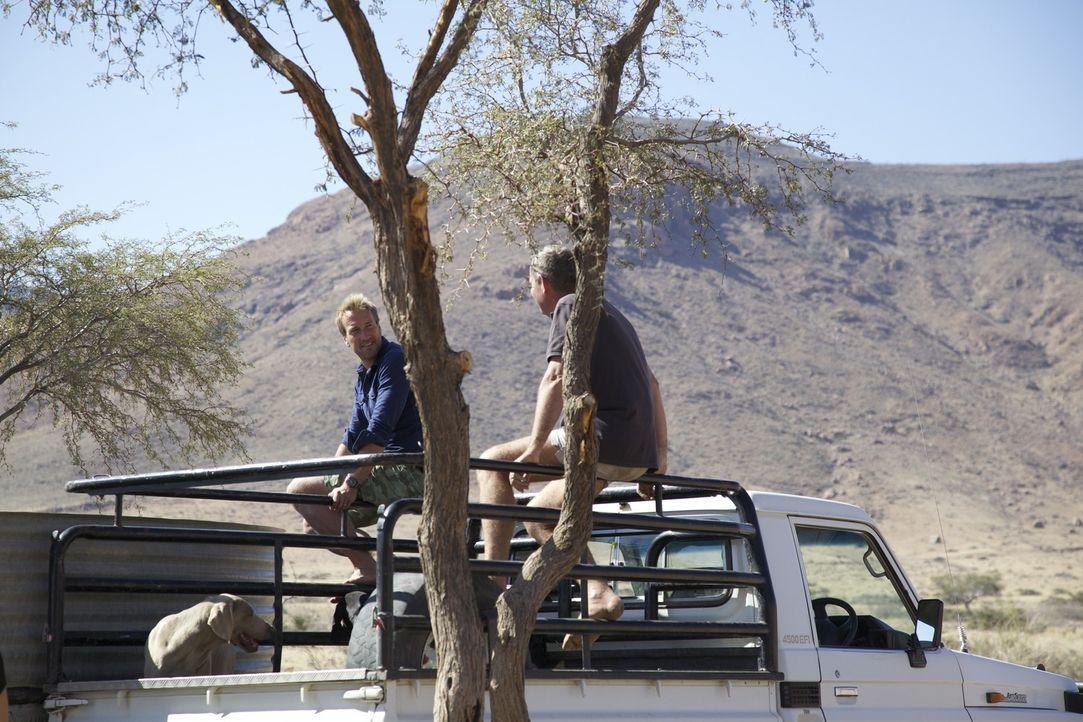 Erkunden mit dem Pick-up die Farm und das dazugehörige Land: Ben Fogle (l.) und Boesman (r.) ... - Bildquelle: Renegade Pictures