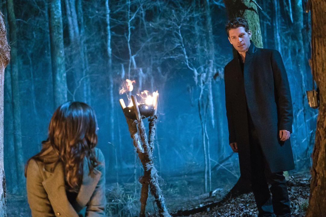 Hayley (Phoebe Tonkin, l.) und Klaus (Joseph Morgan, r.) finden bei Hayleys altem Wolfrudel Unterschlupf, doch diese umgibt ein Geheimnis, das für s... - Bildquelle: Warner Bros. Entertainment, Inc.